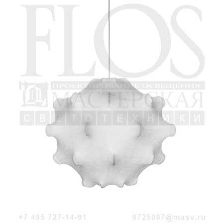 F7401009 Taraxacum, Flos