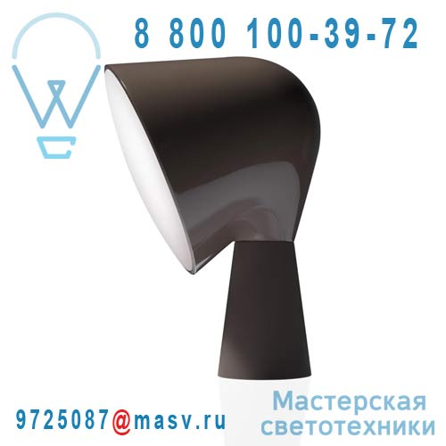 200001 25 Lampe Gris - BINIC Foscarini