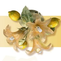 Потолочный светильник Passeri International Frutta F 6195/3