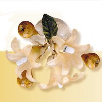 Потолочный светильник Passeri International Frutta F 6205/3