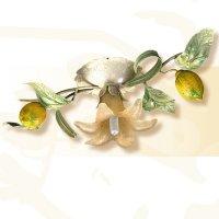 Потолочный светильник Passeri International Frutta F 6465/1