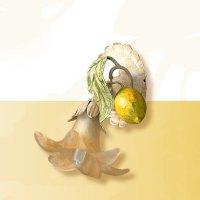 Бра Passeri International Frutta F 6470/1