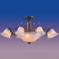 Wunderlicht WL1369-8+3H13