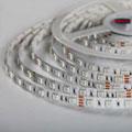 Потолочные светильники Absinthe