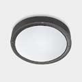 BASIC Leds C4 Outdoor потолочный светильник (маленький) LED 2 арт. в серии 15-9835-Z5-CM