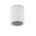 15-9362-14-37 COSMOS Leds C4 Outdoor потолочный светильник (маленький) E27/PAR-30 белый