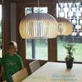 Atto Secto Design 34cm подвесной светильник 66_5000_01